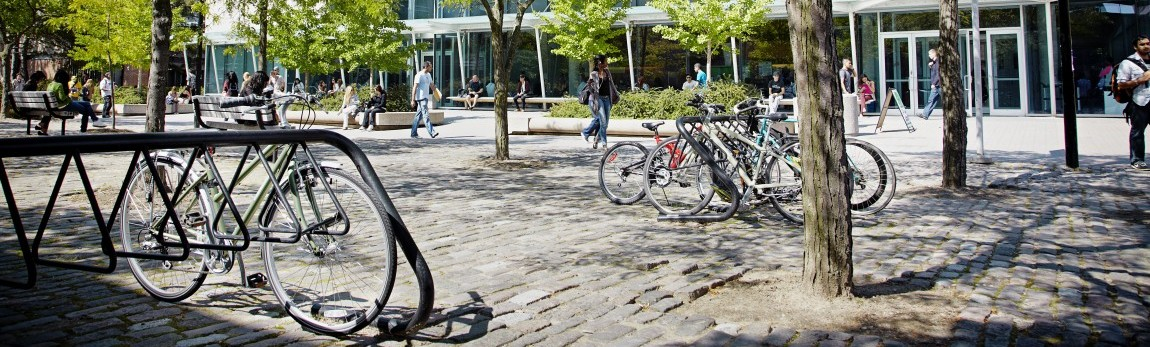 campus_walk_bikes copy
